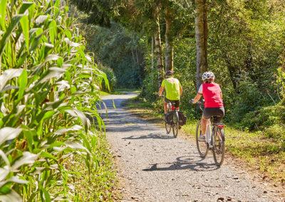 Schärding Radfahren